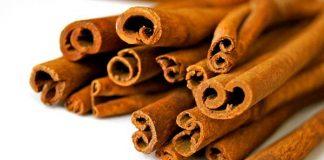 kayu manis dari jambi