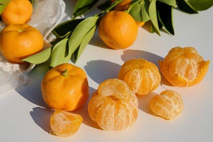 tips menyimpan buah jeruk