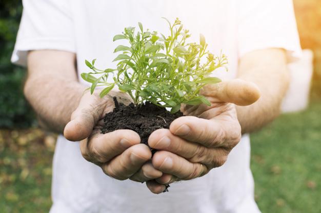 Budidaya ramah lingkungan