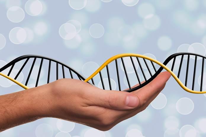 Basis Data Genom