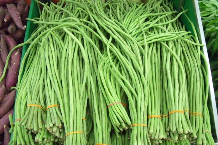 pupuk organik dari sayur