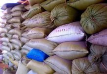 harga beras masih normal