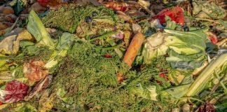 Mengolah Sampah Tanpa Bau