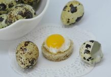 telur puyuh tinggi kolesterol