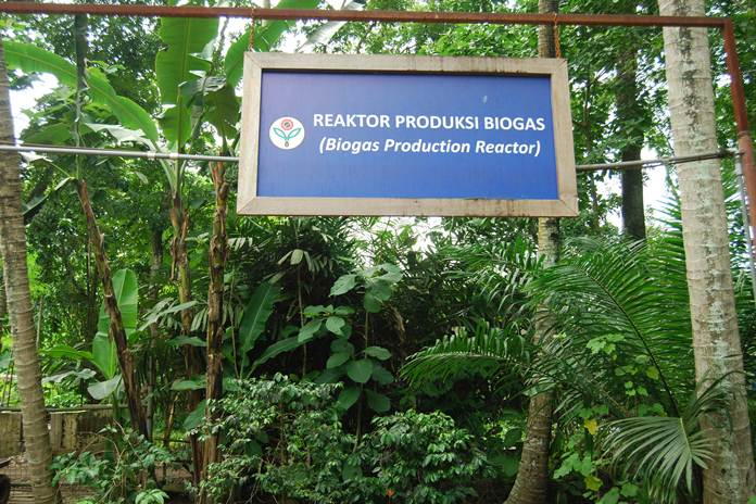 bahan baku biogas