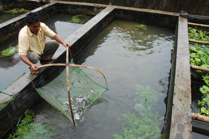 kolam filter