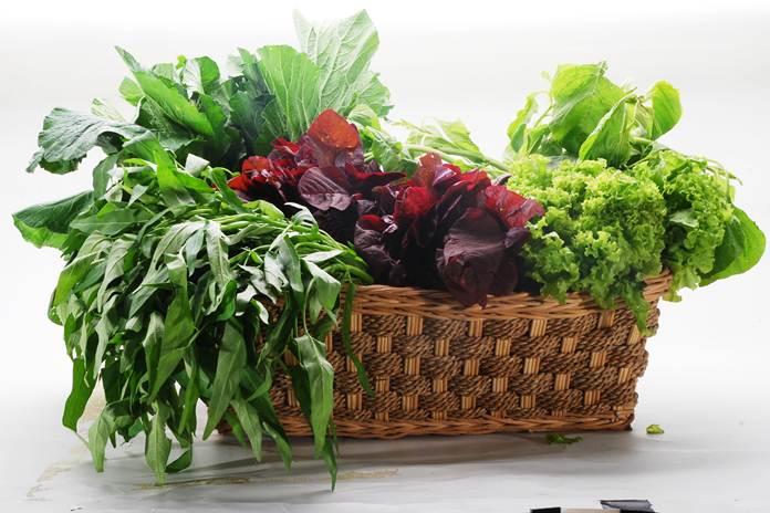 fungsi sayuran