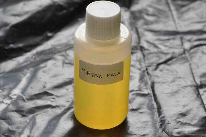 minyak pala