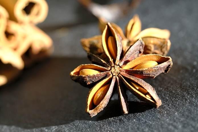 tanaman pelindung vanili