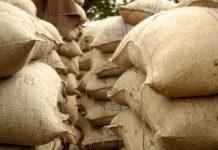 ekspor pertanian
