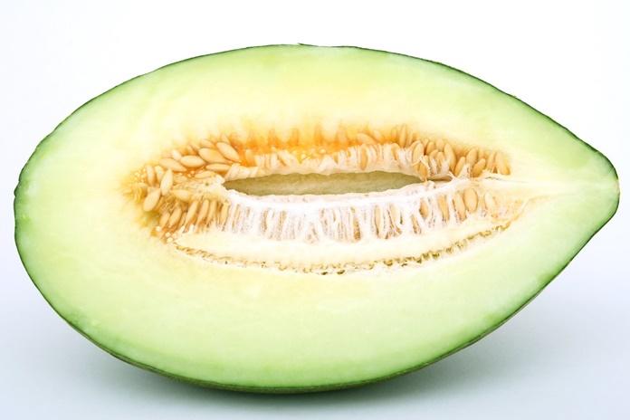 biji melon