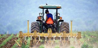 pertanian di era modern