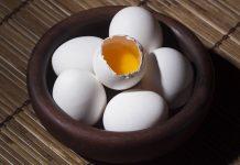 kuning telur ganda