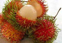 buah rambutan