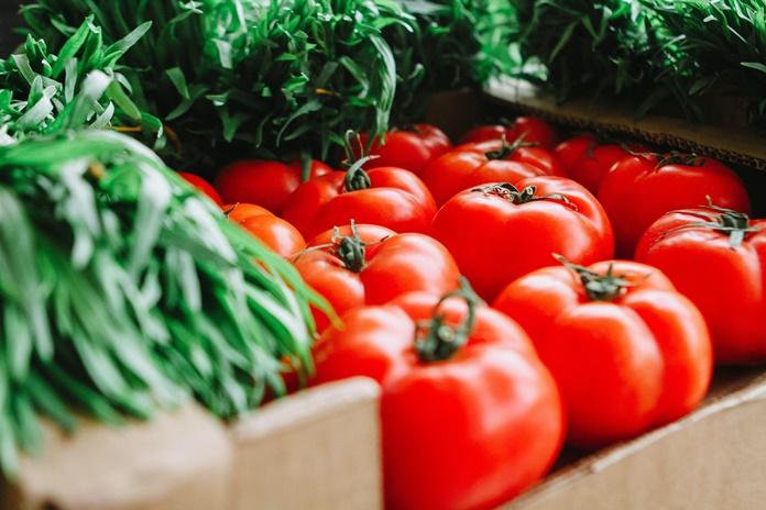 pemasaran sayur organik