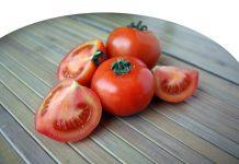membeli benih tomat