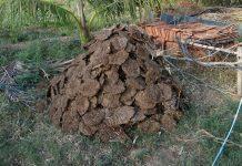 cara pembuatan biogas