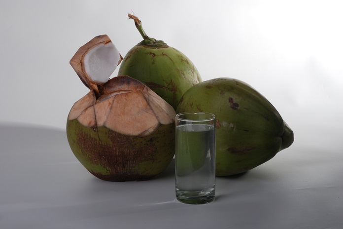olahan kelapa
