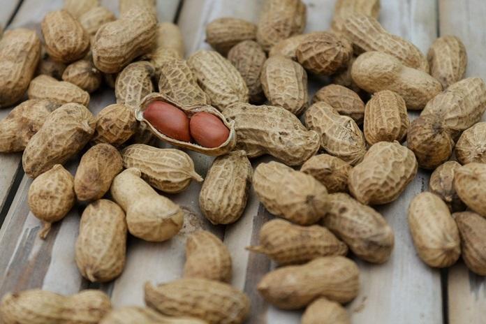 kulit ari kacang tanah
