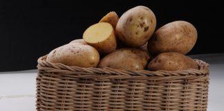 diversifiksi pangan