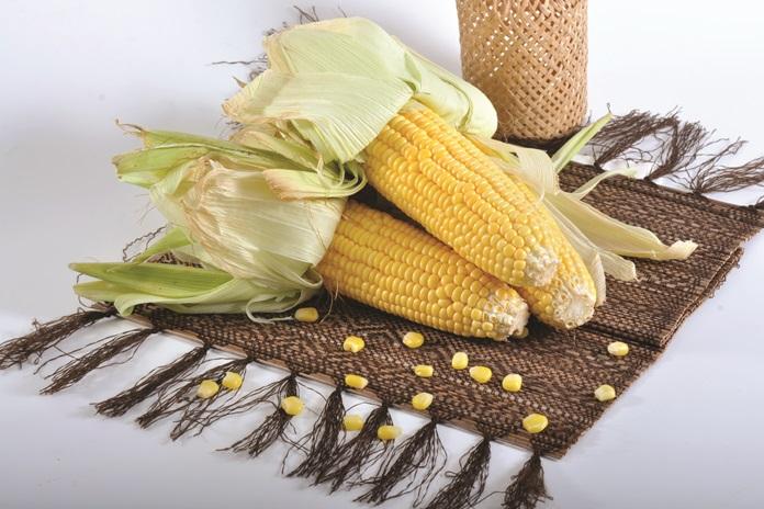 produk makanan dari jagung