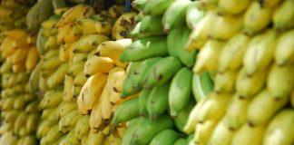 pisang kepok