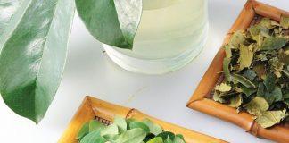 minum ramuan herbal