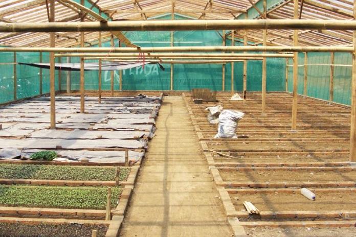 kapur pertanian