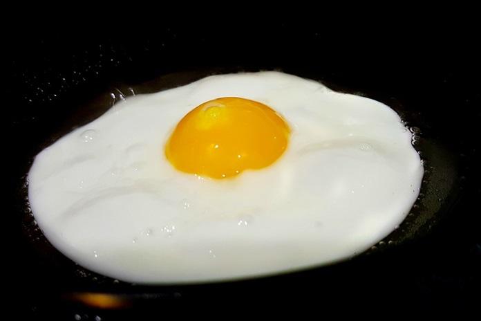 kandungan putih telur
