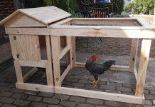 kandang ayam portabel