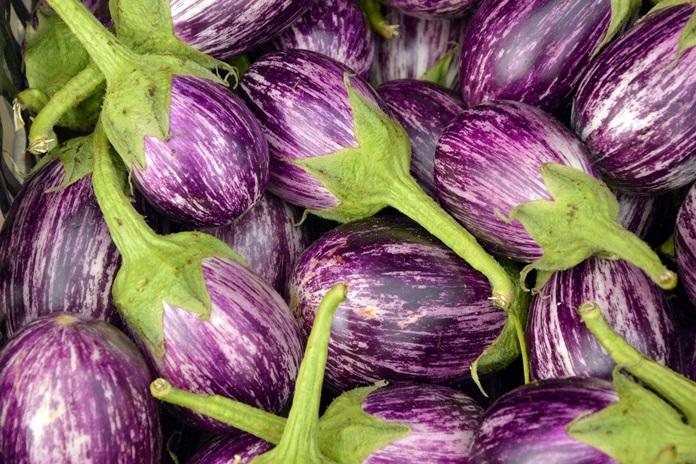 sayuran solanaceae