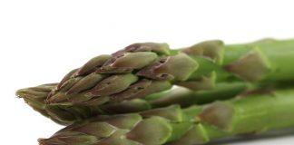 sayuran liliaceae