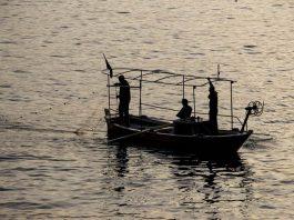 produktivitas nelayan