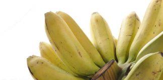 menanam pisang di sawah