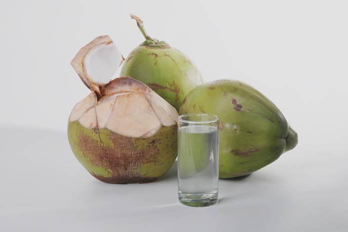potensi kelapa