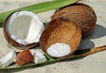 tempurung kelapa