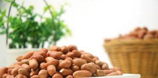 varietas kacang tanah