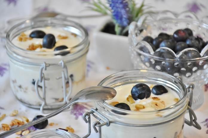 starter yoghurt