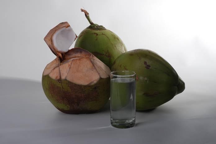 kelapa kopyor kalianda