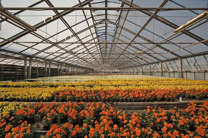 smart green house