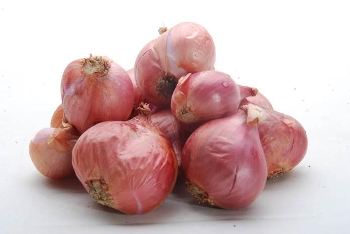 kompos bawang merah
