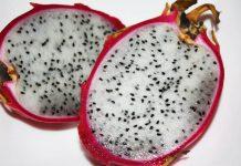 biji buah naga