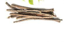 kayu seriawan