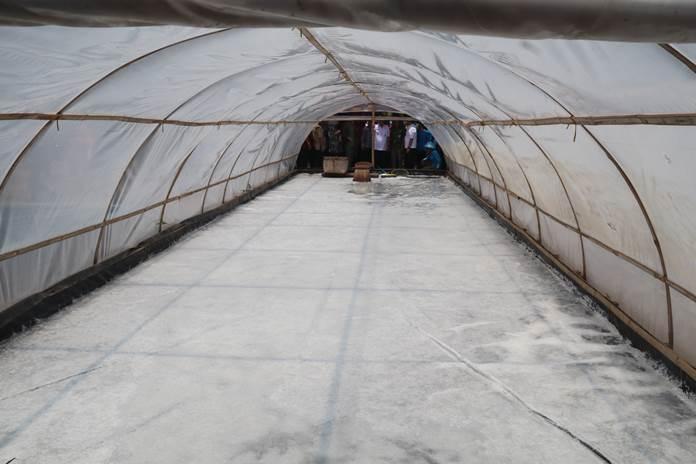 tunnel garam