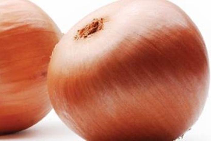 khasiat bawang bombai