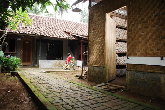 rumah kumbung jamur