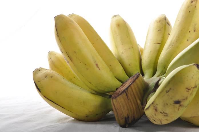 pisang terbesar di dunia