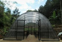 Solar dryer dome