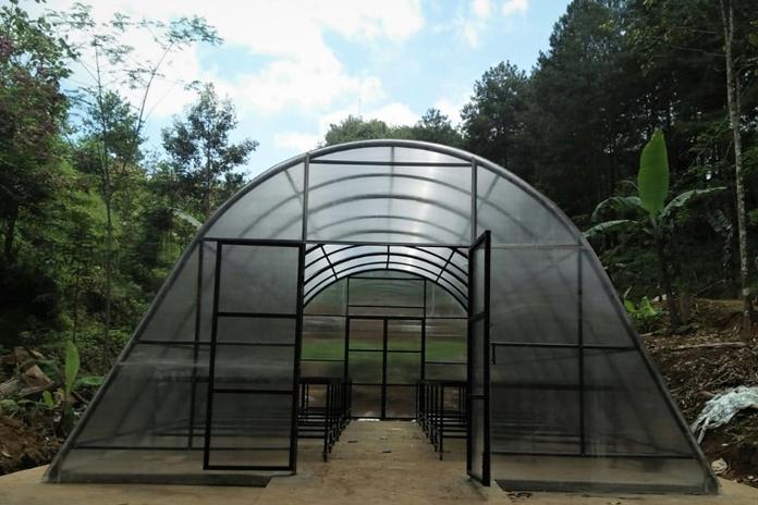 Solar dryer dome