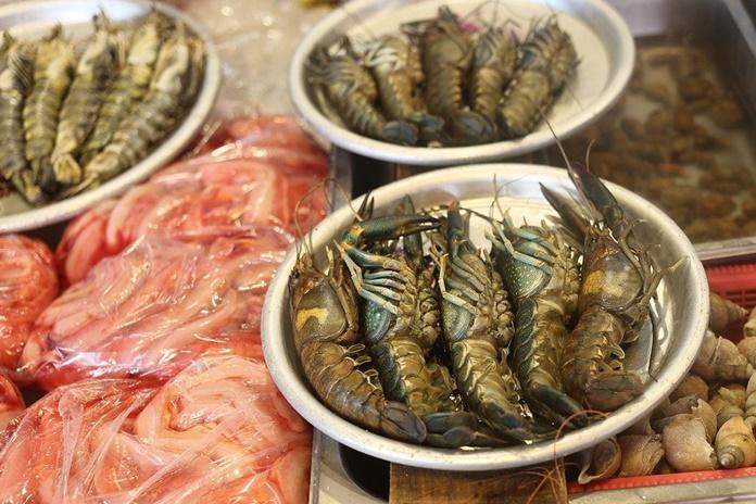 budidaya lobster